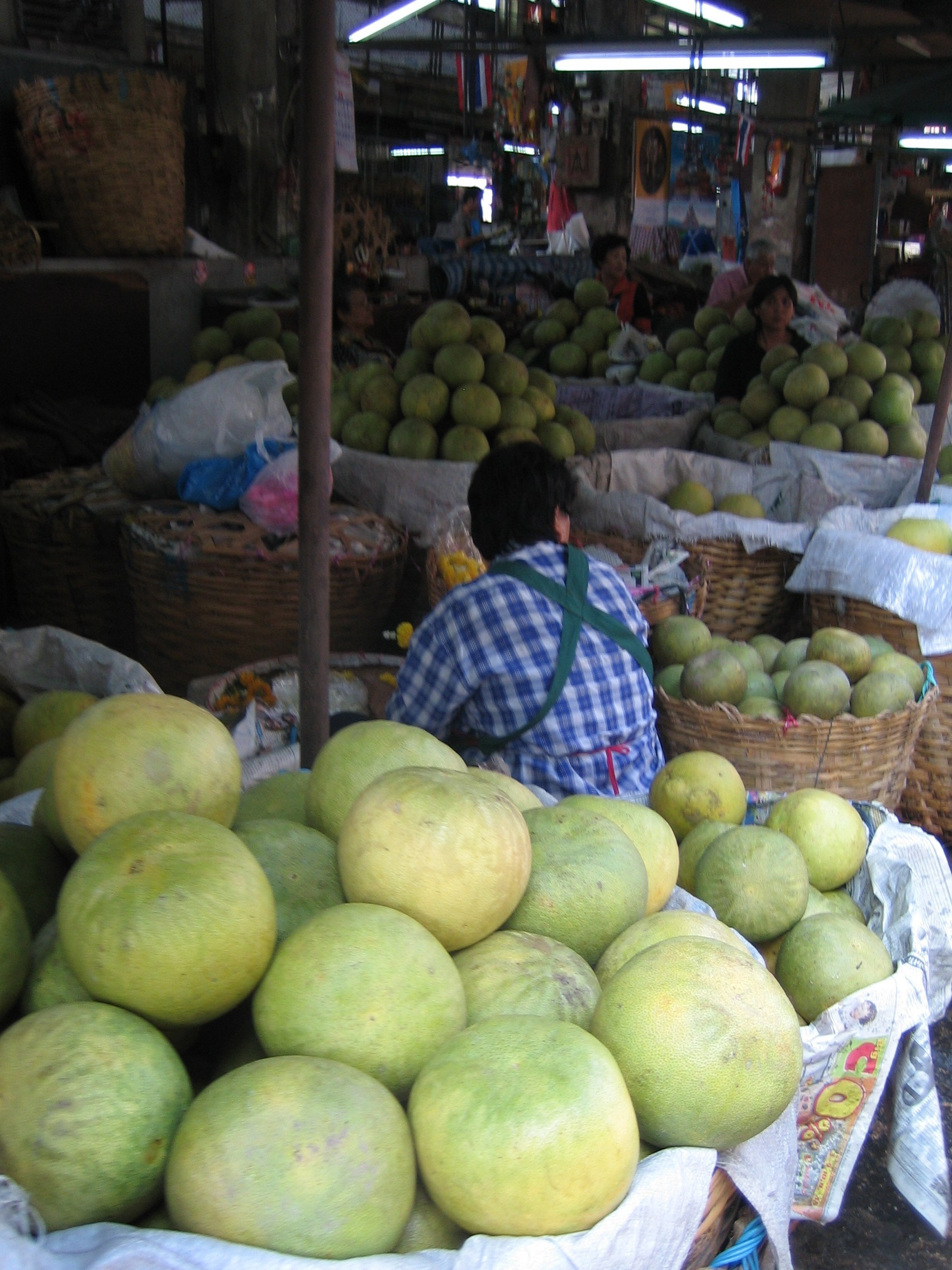 how to grow pomelo in the philippines