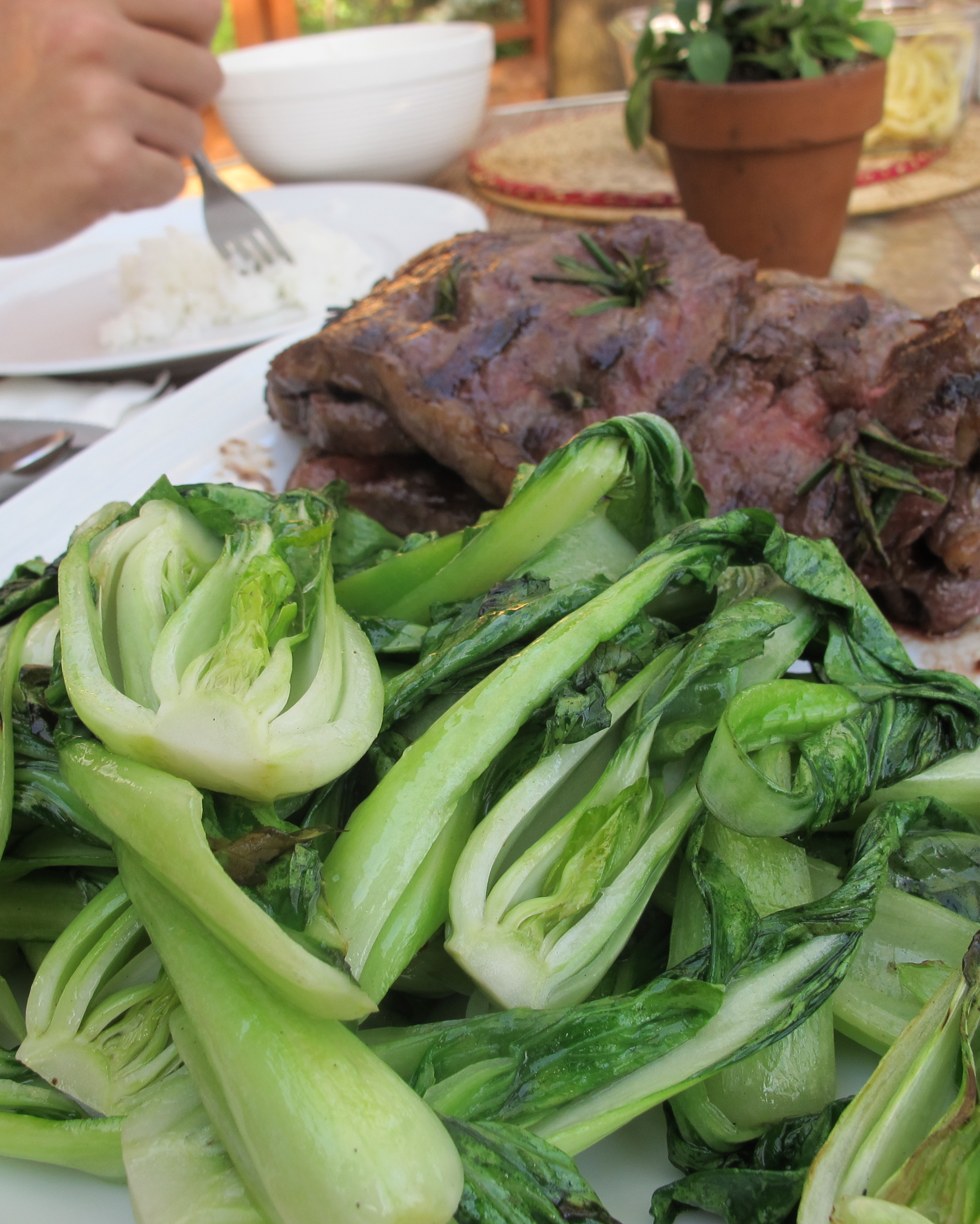 Grilled Bok Choy Recipe Pranee S Thai Kitchen