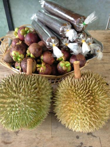 Mangosteen, durian and durian candy