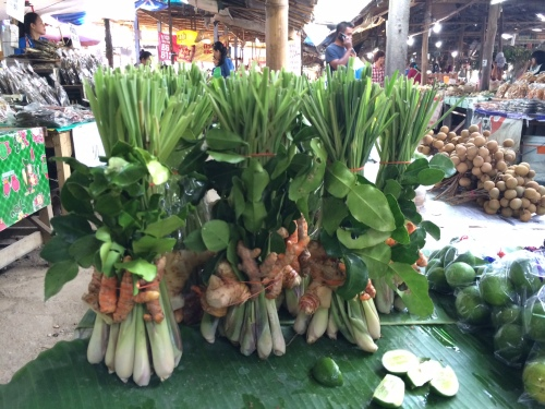 Thai Herbs: Lemongrass, Kaffir Lime Leaves, Galangal and Turmeric